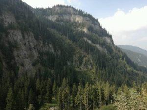 muntii-rodnei-2