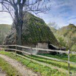 Video și foto. Prin Valea Poienii, pe drumul ce surprinde pitorescul din Apuseni!